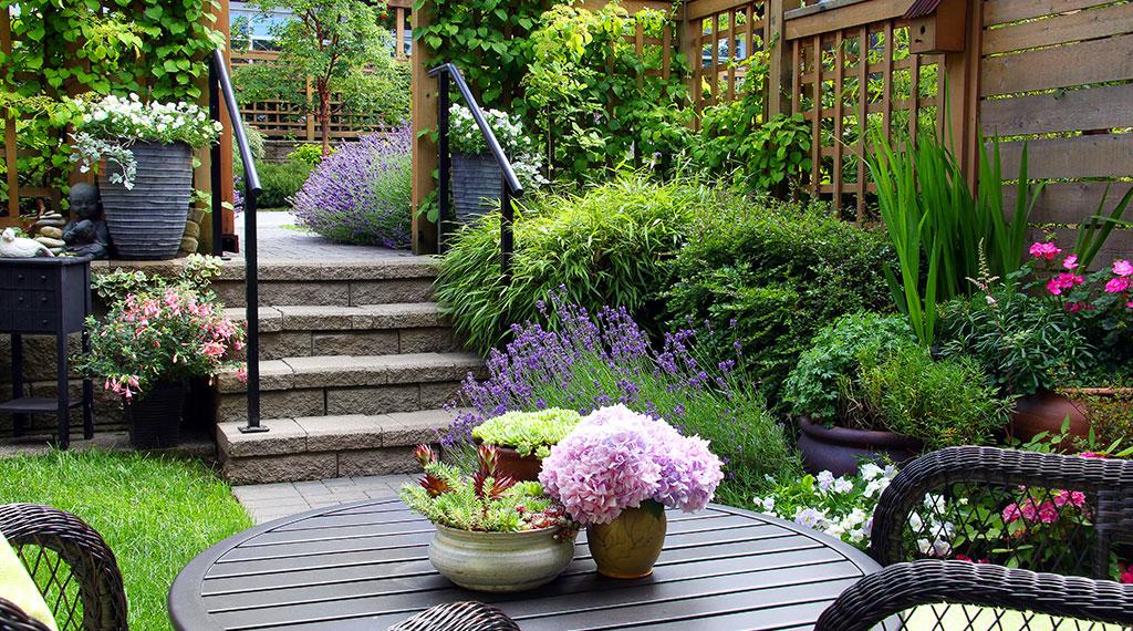 Un jardin sans entretien mythe ou r alit mjardiner for Un jardin sans entretien
