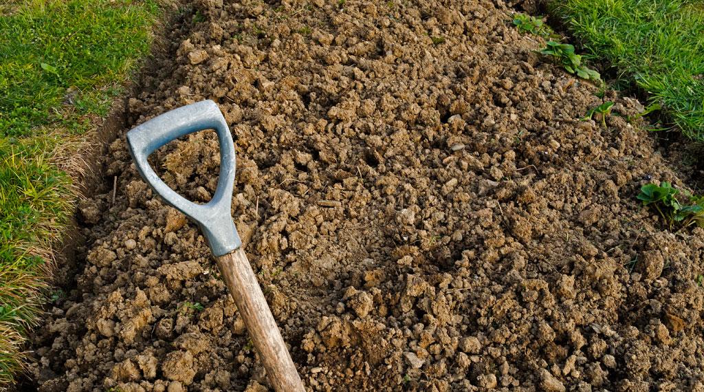 Avoir une belle pelouse sur un sol argileux c est - Comment avoir une belle pelouse ...